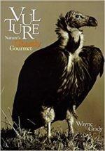 Vulture-e1498938466644